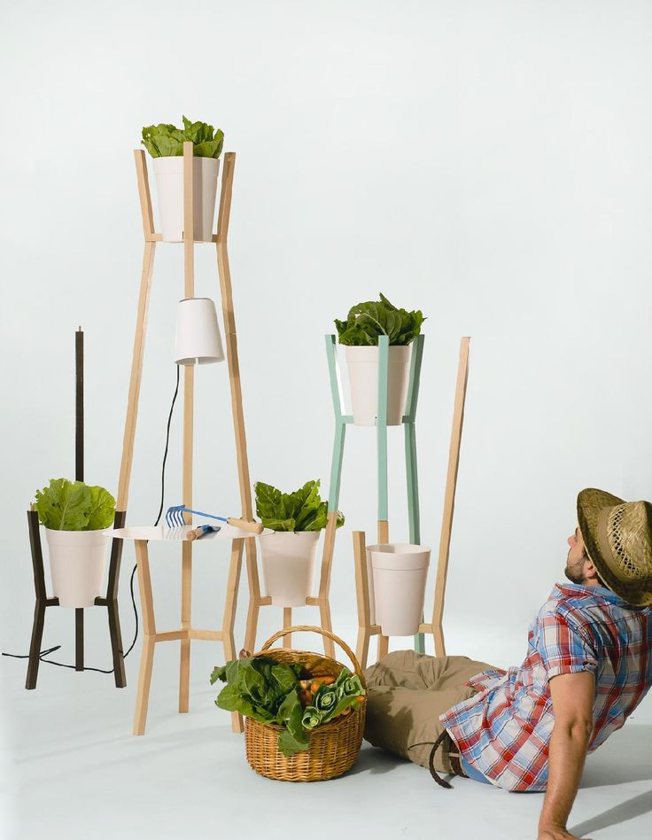 Roots Kitchen Gardens