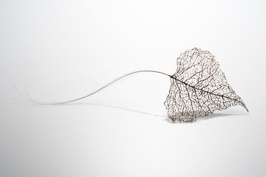the intricacies of a leaf's veining are by Jenine Shereos -recreated by wrapping, stitching, and knotting together strands of human hair