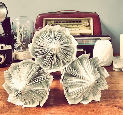 Paper Folded proteas