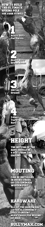 pitbull spring pole
