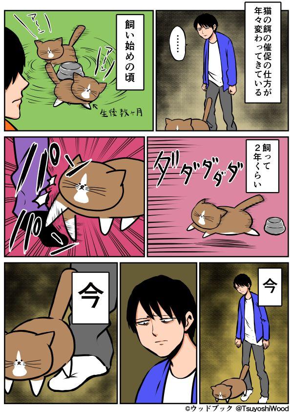 爆笑必死!猫と暮らす漫画家が描いた「漫画日記」が可愛くて面白いw - ペット日和
