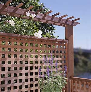 Open square lattice fence panel with arbor like top