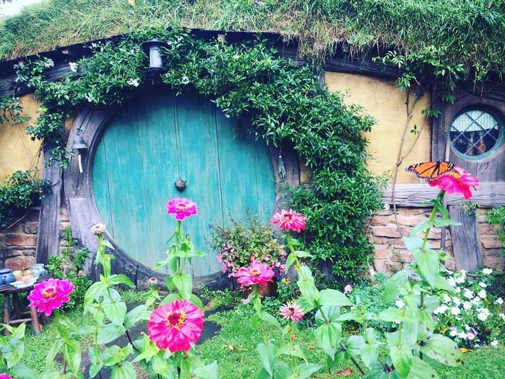 ever wondered how small a hobbit hole can be? check out the monarch butterfly for a bit of perspective #Hobbiton #Matamata #Waikato #thingstodo #NewZealand #itsTime2Go!
