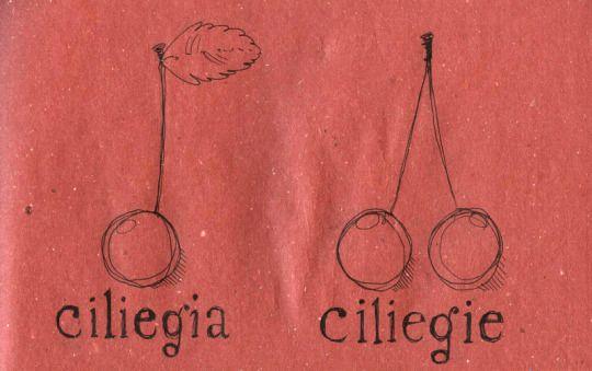 Ciliegia = Cherry / Ciliegie = Cherries