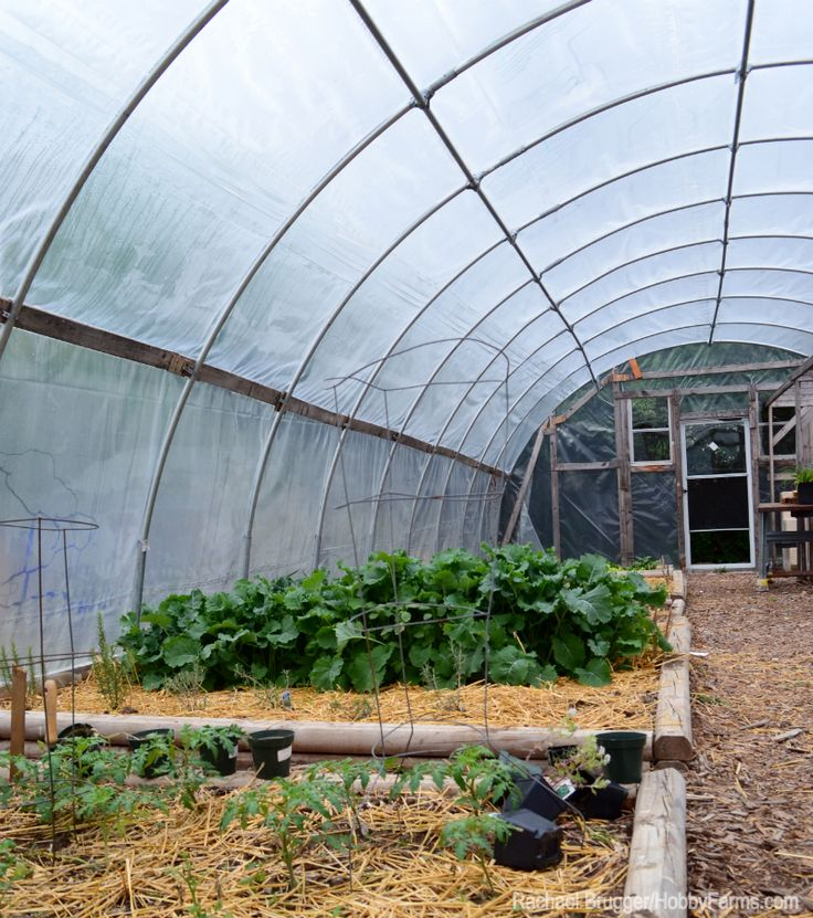 Your farm income doesn't have to drop just because the temperature has. Use your greenhouse to grow products for sale all winter-long.