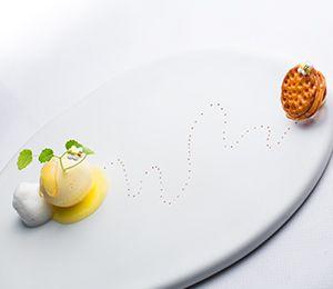Cheesecake glacé au miel citron par Ryuji Teshima / Accord vin & met Château Pierre-Bise, Loire, Quarts de Chaume, 2007, rouge de Naoko Oishi.
