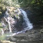 Bach Ma National Park - Hue Vietnam