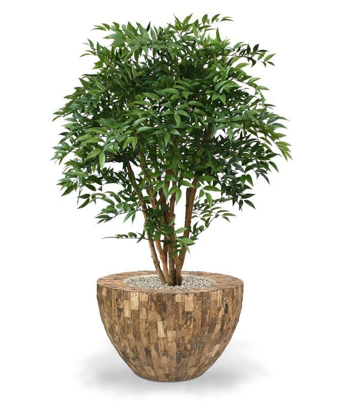 1000 id es sur le th me plantes artificielles sur pinterest bambou fleurs artificielles et. Black Bedroom Furniture Sets. Home Design Ideas