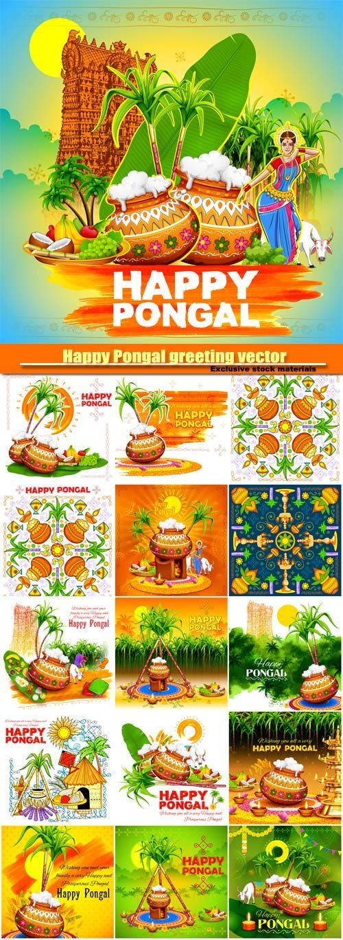 Happy Pongal greeting vector background