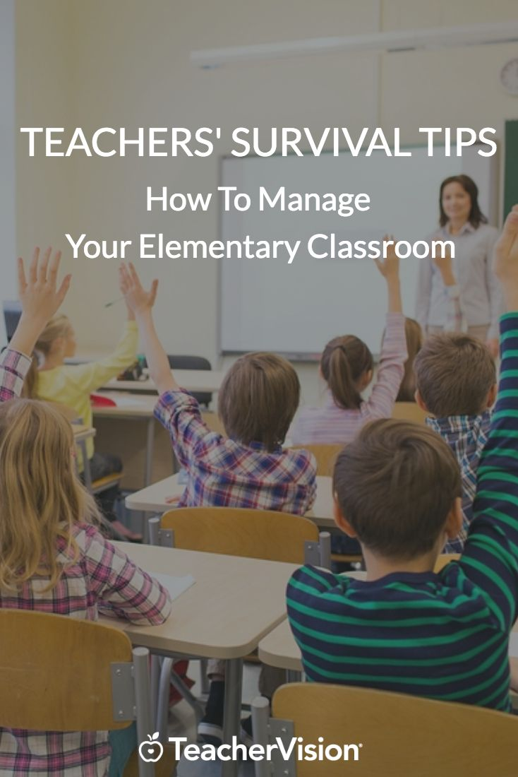 Elementary Classroom Management Techniques ~ Best images about new teacher resources on pinterest
