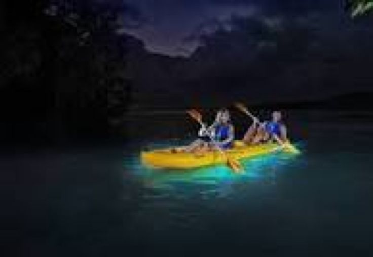 You can't come to Puerto Rico and not see Bioluminescent Bay, one of the coolest spots on the island, if not on Earth. Sign up for their Glowing Bay Adventure, which leaves every night at 6:30 p.m. or 8:30 p.m. for $45 per person. You'll embark on a two-hour paddle through a natural mangrove tunnel, following each other through almost-total darkness (kayaks have a glowstick attached to the back so you can stay in a single-file line) to Bioluminescent Bay. Near the end of the mangove tunnel…