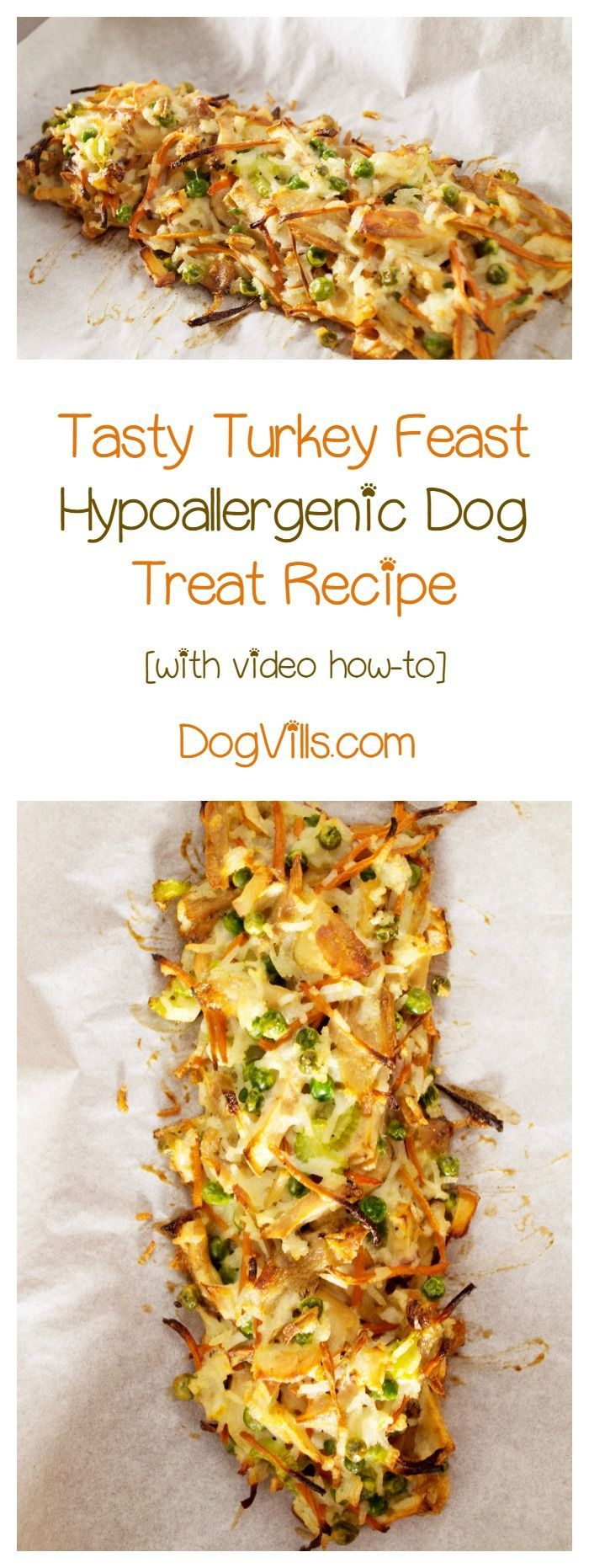 Looking for thanksgiving recipes for dogs? Check out these tasty Turkey Feast dog treats! Bonus: it's hypoallergenic too!