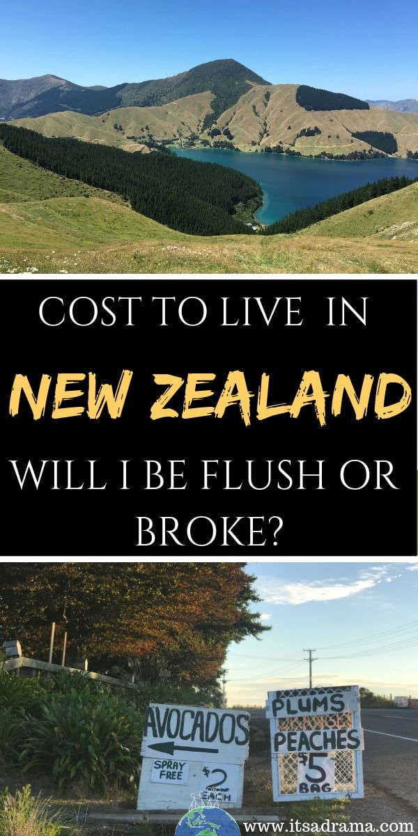 How Much Money Should I Take To New Zealand