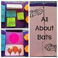 FREE All About Bats Lapbook by Creative Learning Fun