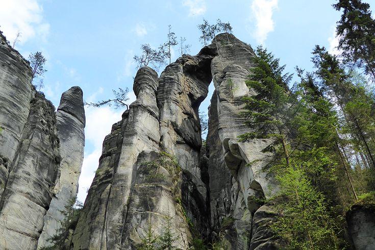 Wandelen in Tsjechie - Midden in het natuurgebied tussen de rotssteden Adršpach en Králové zie ik ineens een plek waar water uit de berg komt. Schoon water. Er hangt een beker bij voor de dorstige wandelaar. Geweldig! Later valt me op dat er een heleboel plekken zijn met voorzieningen met water en bekers. Hier wordt serieus rekening gehouden met de wandelaar. Er bestaat bijvoorbeeld …