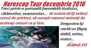 Horoscop decembrie 2016 - Taur