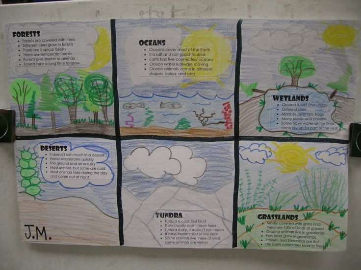 Habitats - Have the students make up bullet facts on computers and then draw pictures to complete.