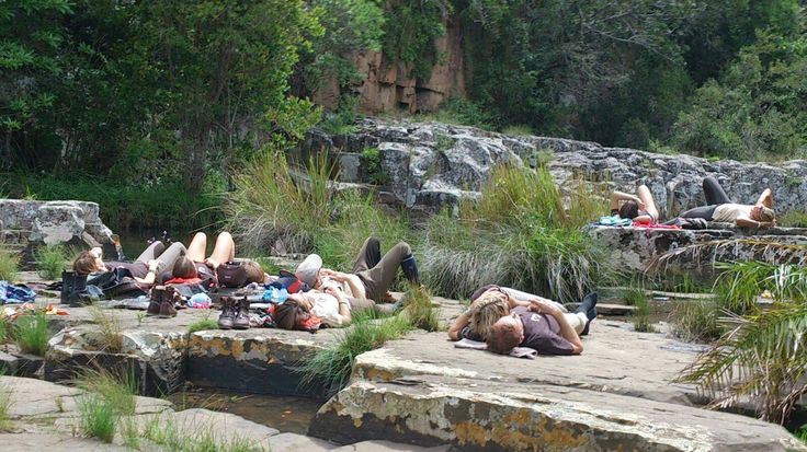African Time , lunch time snooze.  www.wildcoasthorsebackadventures.com?utm_content=buffer1aa1f&utm_medium=social&utm_source=pinterest.com&utm_campaign=buffer