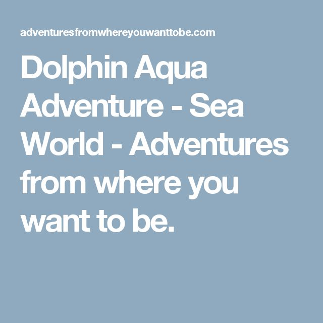 Dolphin Aqua Adventure - Sea World - Adventures from where you want to be.