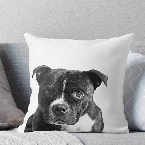 Staffordshire Bull Terrier Throw Pillow By Charlotteh Unusual Dog Breeds Pitbull Terrier Terrier