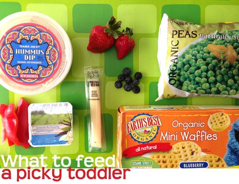 Foods to offer your picky toddler -- good ideas for packing a lunch for day care or for eating at home
