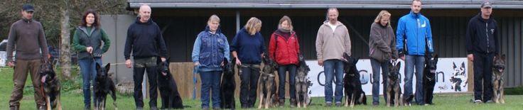 Professional German Shepherd Directory: Deutsche Schäferhunde – von den Wannaer Höhen - Ge...