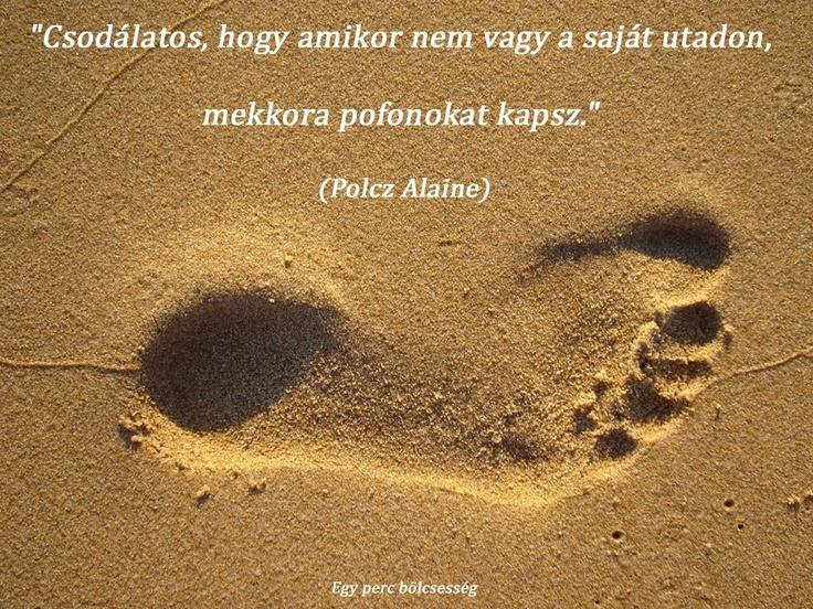 """""""Csodálatos, hogy amikor nem vagy a saját utadon, mekkora pofonokat kapsz."""" (Polcz Alaine, magyar pszichológus és írónő) - A kép forrása: Egy perc bölcsesség # Facebook"""