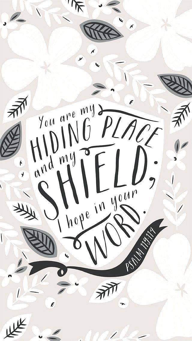 You are my hiding place and my shield; I hope in Your Word  //  Psalm 119:114
