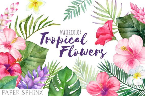 Watercolor Tropical Flowers Clipart Hawaii Clipart Etsy Tropical Flowers Clip Art Flowers