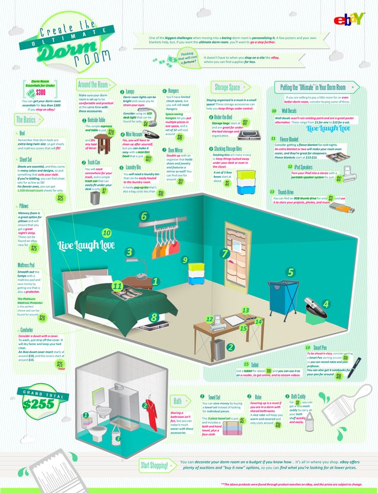 Apartment Room Essentials 87 best dorm room ideas images on pinterest | college hacks