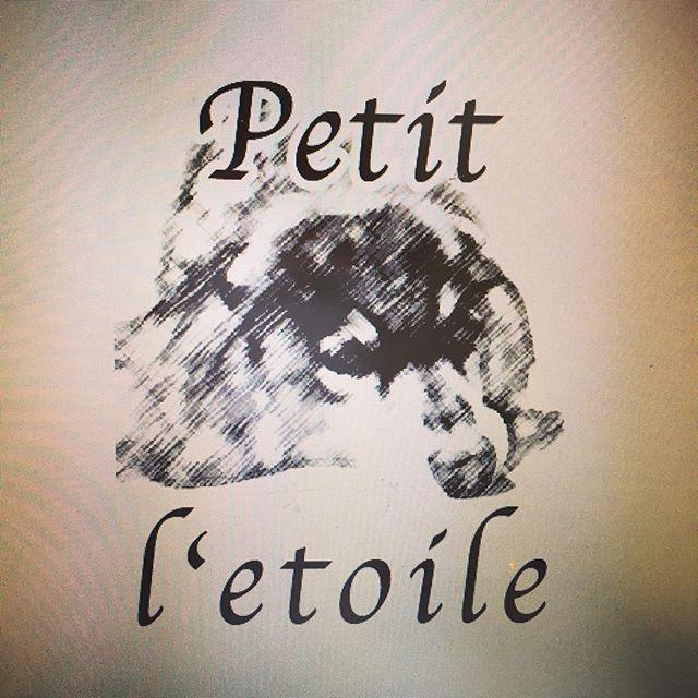 お店のロゴと名前デザインしてみた! #ネイルサロン#新店舗#DIY#diy女子#お店の名前#愛犬#小さな星#プライベートサロン広島#