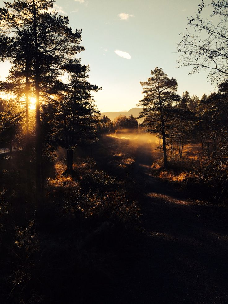 Morgentur på Frei