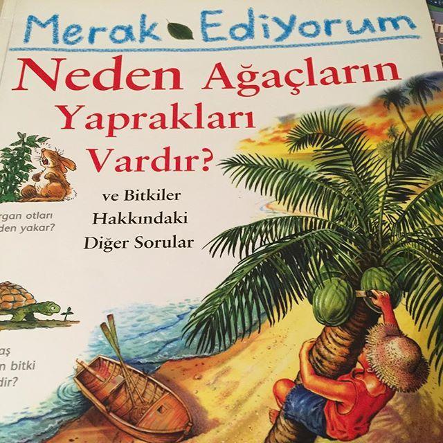 Bir tohum ne zaman büyümeye başlar? Hangi bitki tuzak kurar? İşte bu soruların cevabı bu geceki #uykudanoncekitabi Merak Ediyorum'da. #tudem Yayınları'ndan.  #uykudanöncekitabı #çocukkitabı #cocukkitabi #internetanneleri #iganneleri #book #kidsbook #kitapkurdu #kitapçı #booksforkids #instakitap #kitap #kitapçı #çağınınkitaplığından #etkinlikpaylaşımı  #çocuk #çocukgelişimi #kitapevi #uykudanönce #evokulu #homeschooling #etkinlikönerisi #evokulu #homeschooling #hadioynayalım #evokulu…