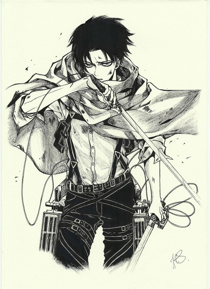 Levi (Shingeki no Kyojin/Attack on Titan)                                                                                                                                                      More
