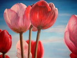 Image result for red tulip drawing