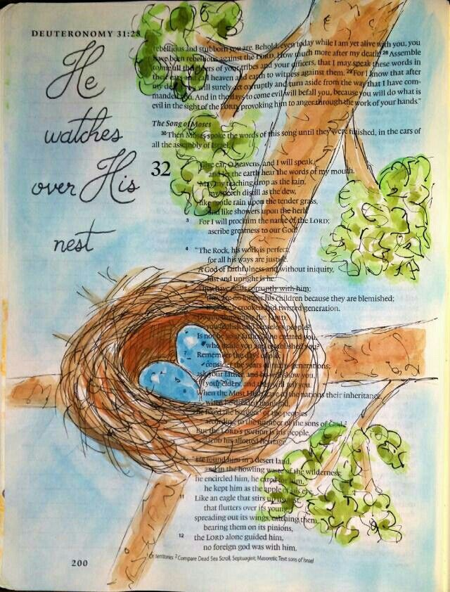 "Deuteronomy 32:11 - God is a nurturer. I drew three eggs for the three persons of the trinity. God values all the life potential inside each of us, because it comes from him. Our potential is the expression of his life in us. He waits patiently for us to crack our shell and get on with it already! He's a good ""mother"" in that way. :) Nest watercolor painting - Bible art journaling by @peggythibodeau www.peggyart.com"