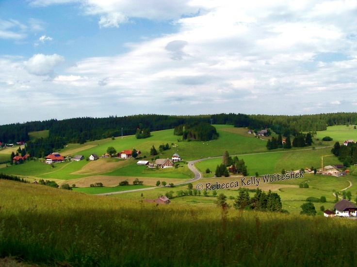"""On the outskirts of the Black Forest in Baden-Württemberg, Germany.  This was my """"backyard"""" while living in Germany in 2008."""