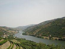Port wine - Wikipedia, the free encyclopedia