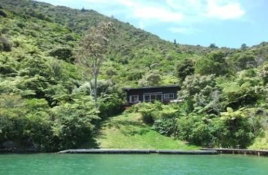Traditional NZ Baches - Green water views