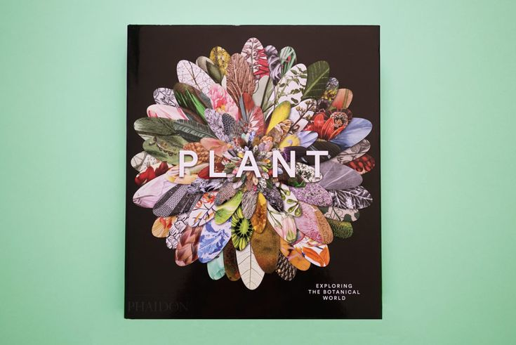 BOOKS: PLANTS - Estée Lalonde