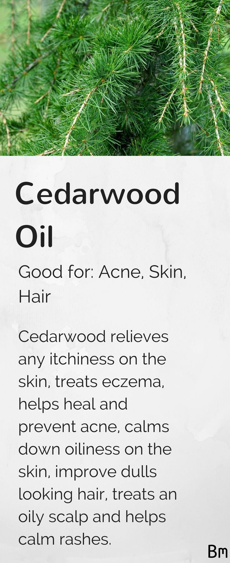 Cedarwood essential oil relieves itchiness on the skin, treats eczema, heals acne, calms oiliness on the skin, improves dull looking hair and helps calm rashes. But, remember to dilute your essential oils before using them! Either two drops in a tablespoon of coconut oil, jojoba oil or argan oil, or maybe even try a tablespoon of body lotion. Click the image to learn more about essential oils!