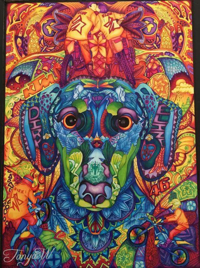 Ballpoint Pen drawing daschund  mandala art