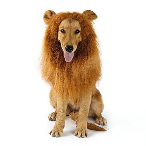Oferta: 10.99€ Dto: -61%. Comprar Ofertas de Peluca de León Para Perro Gato Cachorro Mascotas Ropa Sombrero Dress Disfraces Costume Para Navidad Fiesta Cosplay Traje León barato. ¡Mira las ofertas!