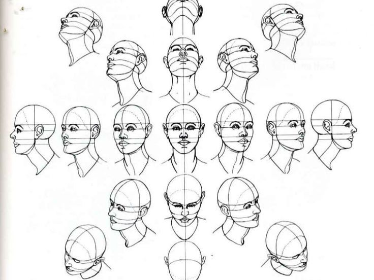 Head Looking Up Reference Google Search Drawing People Art Tutorials Drawing Drawing Tutorial Face