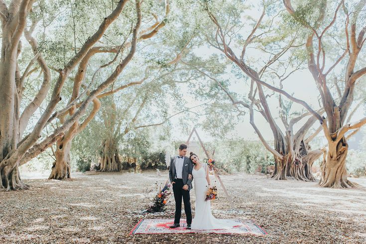 Bloodwood Botanica | Triangle Arbour Bohemian Elopement