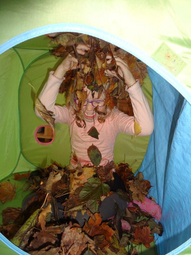 Bladeren gezocht met de oppaskindjes van de Bonte Rups. Deze in een tent gedaan en terwijl we het liedje 'herfst, herfst, wat heb je te koop'zongen, speelde iemand met de bladeren