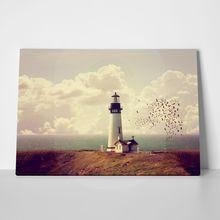 Lighthousebirds
