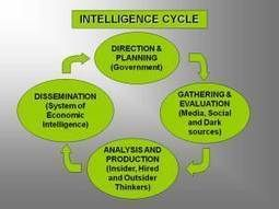 ECONOMIC INTELLIGENCE AND DECISION MAKING – Part I   Bounded Rationality and Beyond   Scoop.it