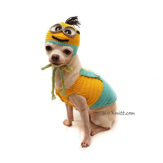 Minion Dog Clothes Crochet Minion Dog Hat Crochet Funny Dog