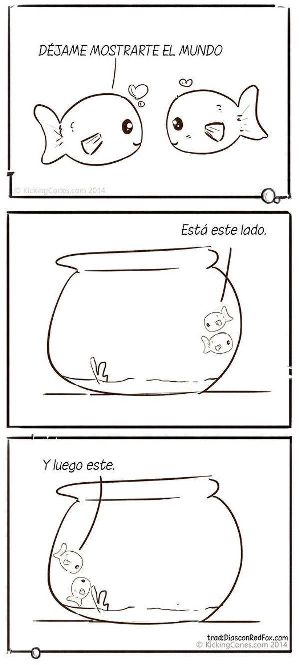 El mundo de los peces